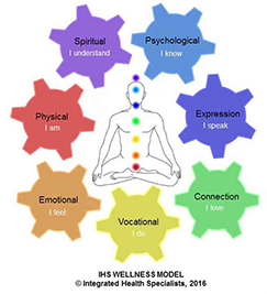Integrated Health Specialists Holistic Health Model