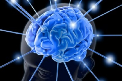 Neuroplasticity: Brain Training for Every Day